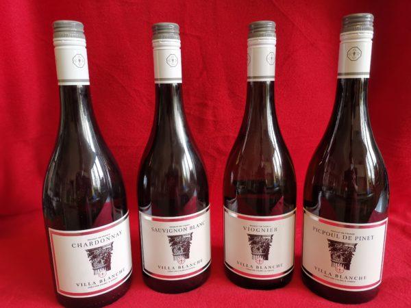 Villa Blanche - Weinkiste Weißweine